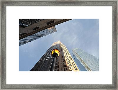 Size Matters Framed Print by Bill Cannon