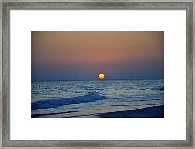 Sizzle Framed Print by Kelly D Photography