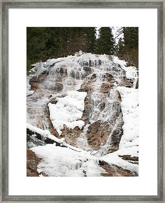 Framed Print featuring the photograph Skalkaho Falls by Jewel Hengen