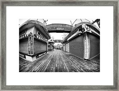 Skate Shoes Framed Print by John Rizzuto