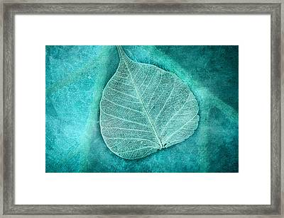 Skeletal Leaf Framed Print