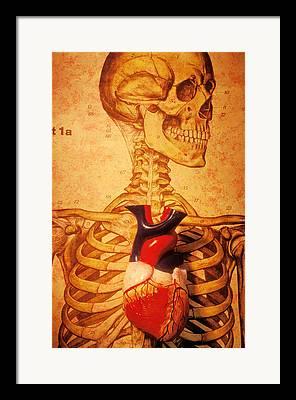 Aorta Framed Prints