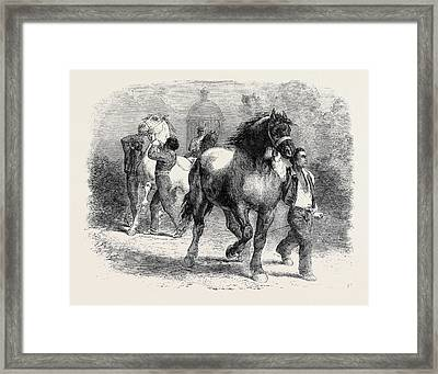 Sketch From The Horse Fair Framed Print