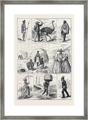Sketches In South Africa 1. Young Zulu Chief Natal 2 Framed Print