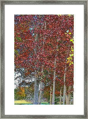 Sketching Autumn Framed Print