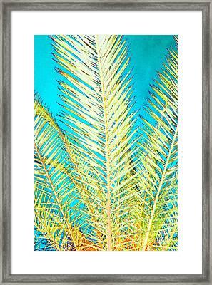 Sketchy Palm Fronds Framed Print