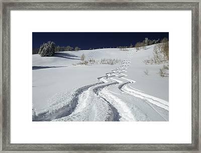 Ski Tracks In Big Cottonwood Canyon Framed Print by Howie Garber