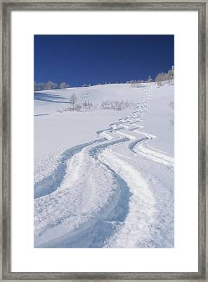 Ski Tracks In Silver Fork, Big Framed Print by Howie Garber