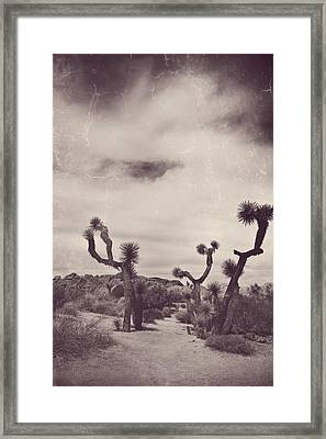 Skies May Fall Framed Print