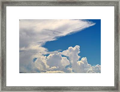 Skies-nature Framed Print by Sarah Loveland