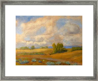 Skies Over Western Spokane Framed Print