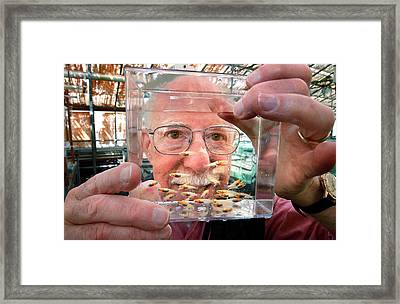 Skin Cancer Research Framed Print