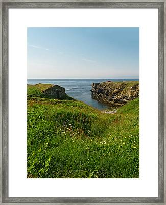 Skipi Geo Framed Print