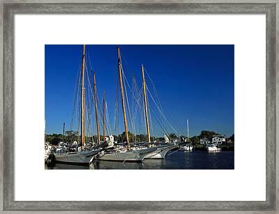Skipjacks  Framed Print