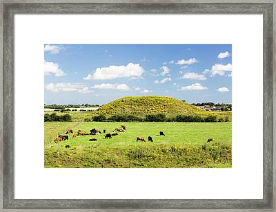 Skipsea Castle Framed Print by Ashley Cooper