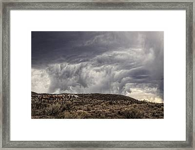 Skirting The Storm Framed Print by Joan Davis