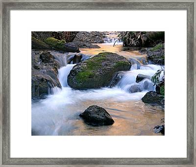 Skokomish River Framed Print