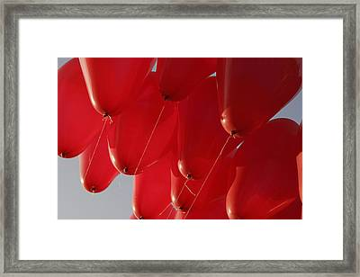 Framed Print featuring the photograph Skc 0029 Unity In Flying by Sunil Kapadia