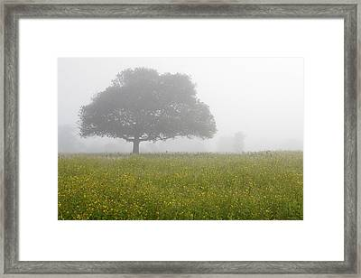 Framed Print featuring the photograph Skc 0056 Tree In Fog by Sunil Kapadia
