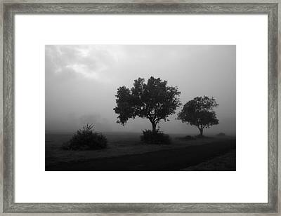 Framed Print featuring the photograph Skc 0074 A Family Of Trees by Sunil Kapadia