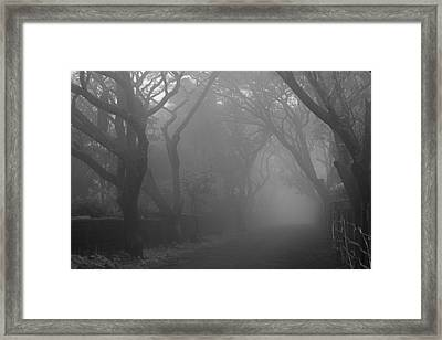 Framed Print featuring the photograph Skc 0077 A Romatic Path by Sunil Kapadia