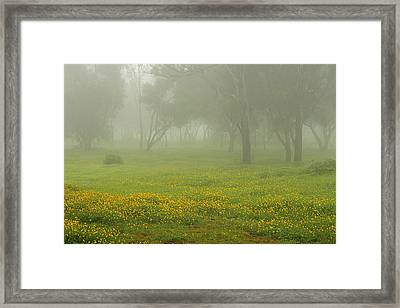 Framed Print featuring the photograph Skc 0835 Romance In The Meadows by Sunil Kapadia