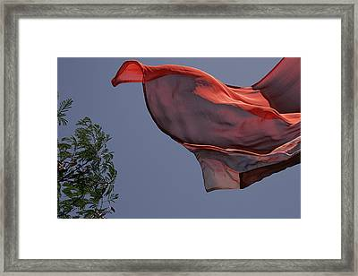 Framed Print featuring the photograph Skc 0958 The Flying Saree by Sunil Kapadia