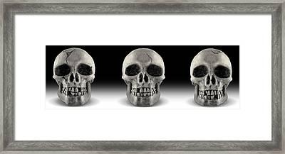 Skull 4 Panoramic Framed Print