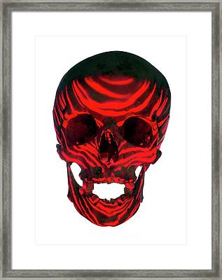 Skull Warning Framed Print