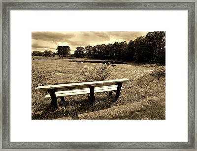 Skunk Lake Framed Print by Amanda Stadther
