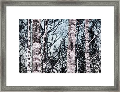 Skutskar 005 Framed Print by Per Lidvall