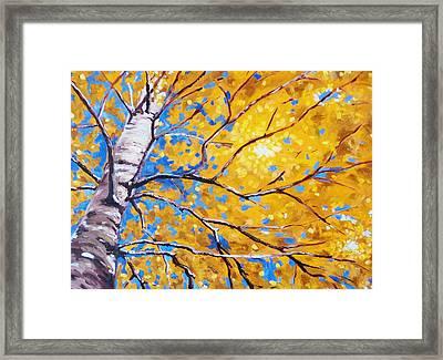 Sky Birch Framed Print by Nancy Merkle