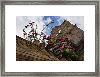 Framed Print featuring the photograph Sky Blossoms by Georgia Mizuleva