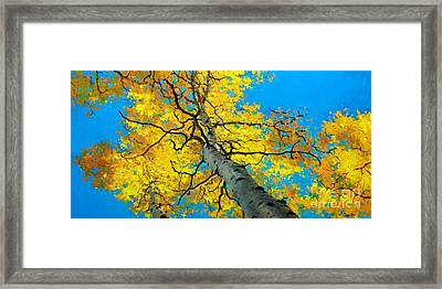 Sky High 3 Framed Print by Gary Kim