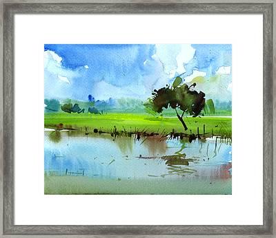 Sky N Farmland Framed Print by Anil Nene