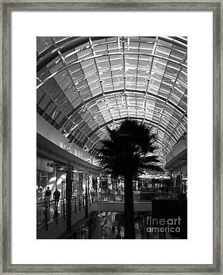 Sky Of Glass Framed Print by Barbara Bardzik