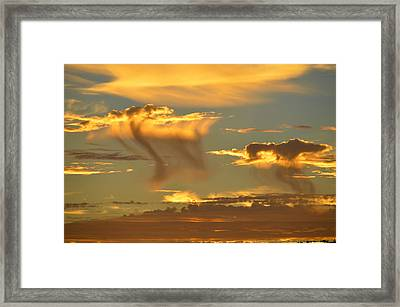 Sky Of Snakes Framed Print