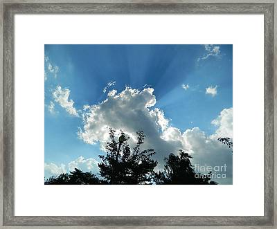 Framed Print featuring the photograph Sky Phenomenon At Hains Point by Emmy Marie Vickers