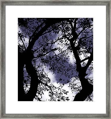 Sky Visions Framed Print by Steven Milner