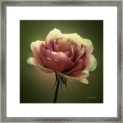 Skyblue Pink Framed Print by RC deWinter