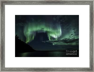 Skycat Framed Print by Darcy Shawchek