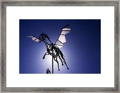 Skyhorse Framed Print by Bernard  Barcos