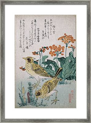 Skylarks And Primroses  Framed Print by Kubo Shunman