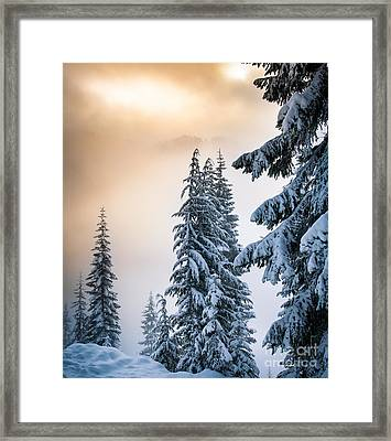 Skyline Lake Forest - January Framed Print