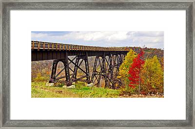 Skywalk Kinzua Bridge State Park Mckean County Pennsylvania Framed Print
