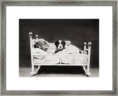 Sleep Over Framed Print by Aged Pixel