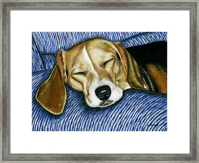 Sleeping Beagle Framed Print