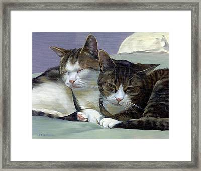 Sleeping Buddies Framed Print