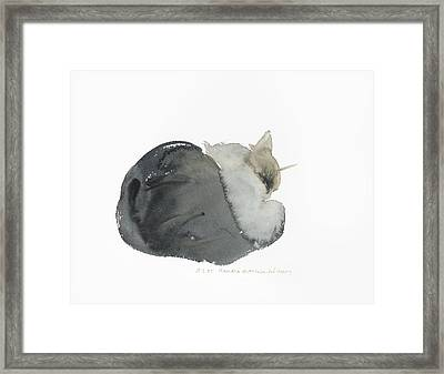 Sleeping Cat Framed Print