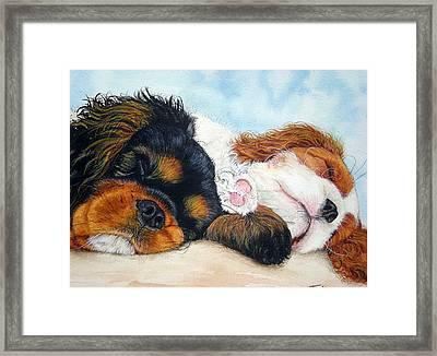 Sleeping Cavalier Puppies Framed Print by Toulla Hadjigeorgiou